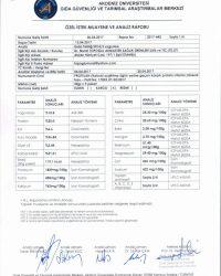 Protelan Akdeniz Üniversitesi Analiz Raporu - 4