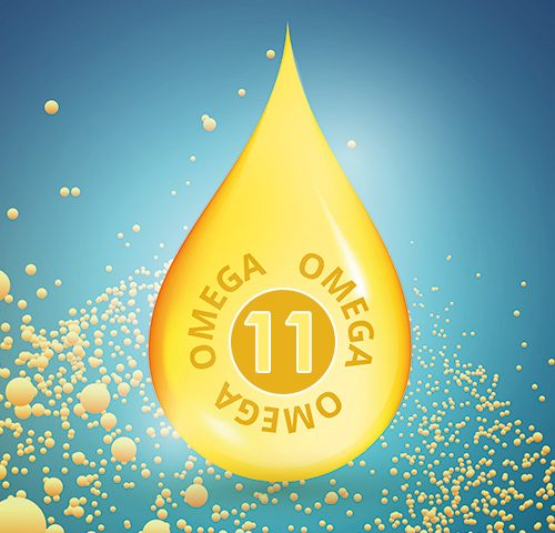 Omega-11 - Gadoleik Asit