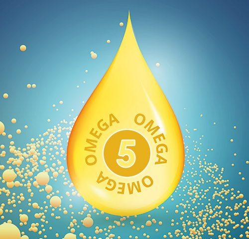 Omega-5 - Punisik Asit